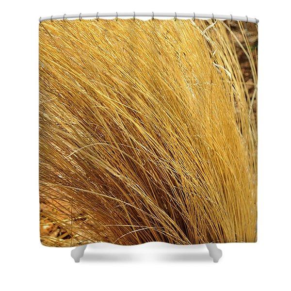 Dried Grass Shower Curtain