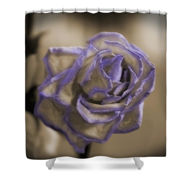 Dried Rose In Sienna And Ultra Violet Shower Curtain