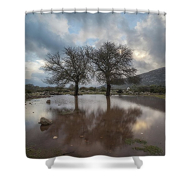 Dried Tree Reflected Shower Curtain