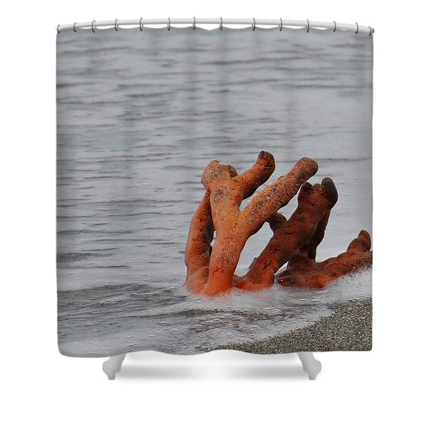 Drifting Coral Shower Curtain