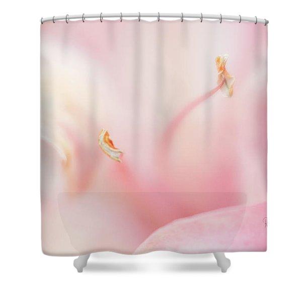 Drifting In A Dream Shower Curtain