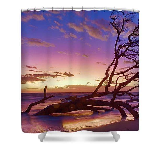 Driftwood Beach 1 Shower Curtain