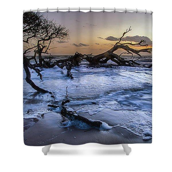 Driftwood Beach 3 Shower Curtain