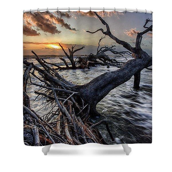 Driftwood Beach 5 Shower Curtain