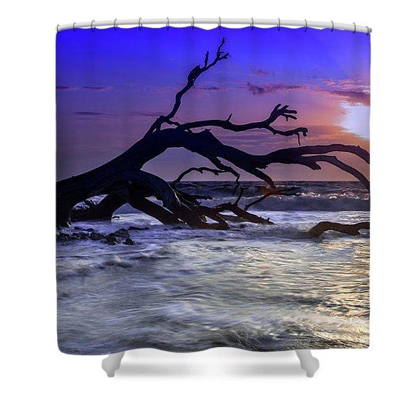 Driftwood Beach 9 Shower Curtain