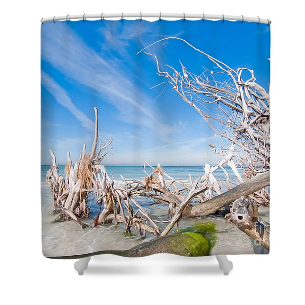 Driftwood C141348 Shower Curtain