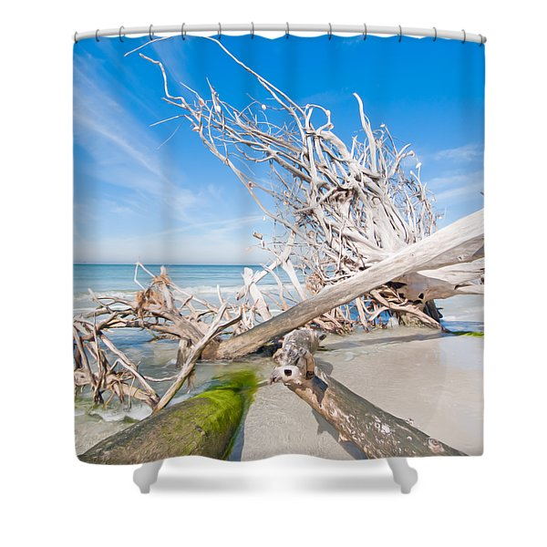 Driftwood C141349 Shower Curtain
