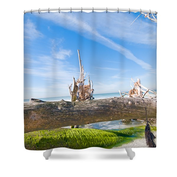 Driftwood C141350 Shower Curtain