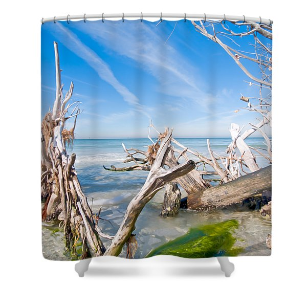 Driftwood C141354 Shower Curtain