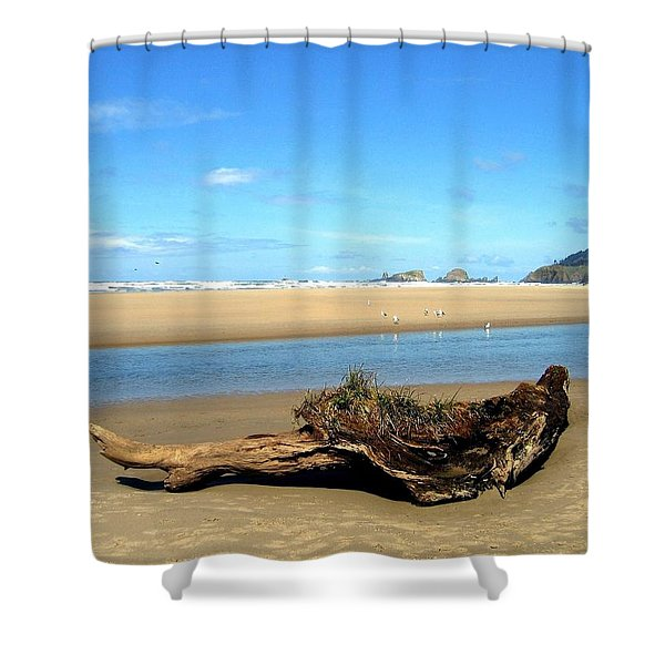 Driftwood Garden Shower Curtain