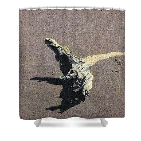 Coastal Driftwood Shower Curtain