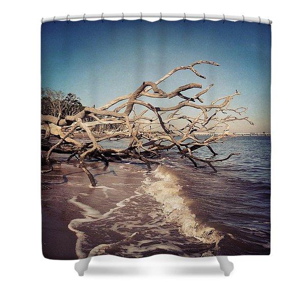 Driftwood On Blackrock Beach Shower Curtain