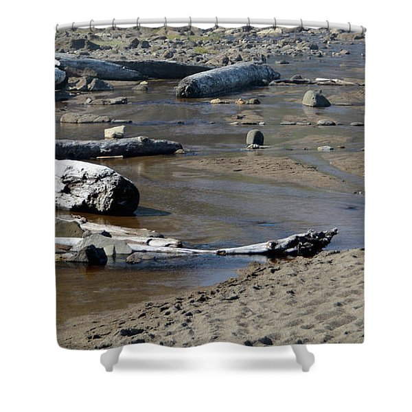 Driftwood Oregon Coast Shower Curtain