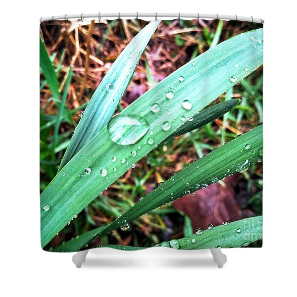Droplets Shower Curtain