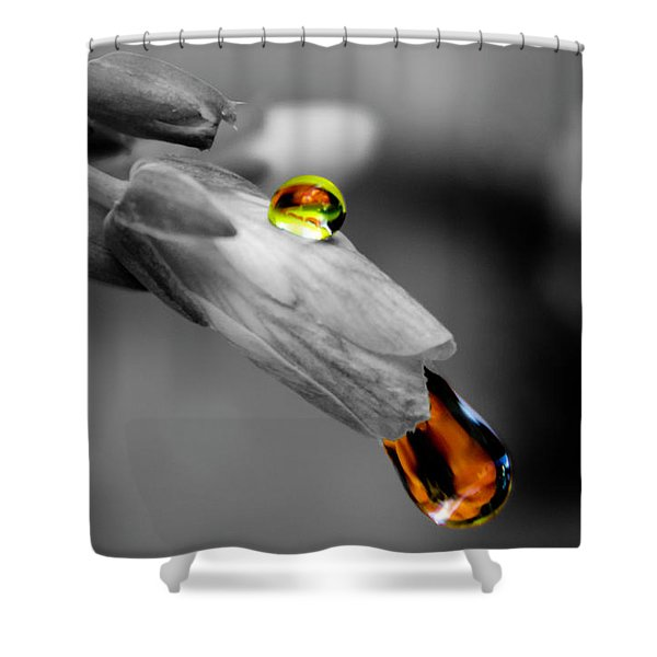 Drops On A Blossom Shower Curtain