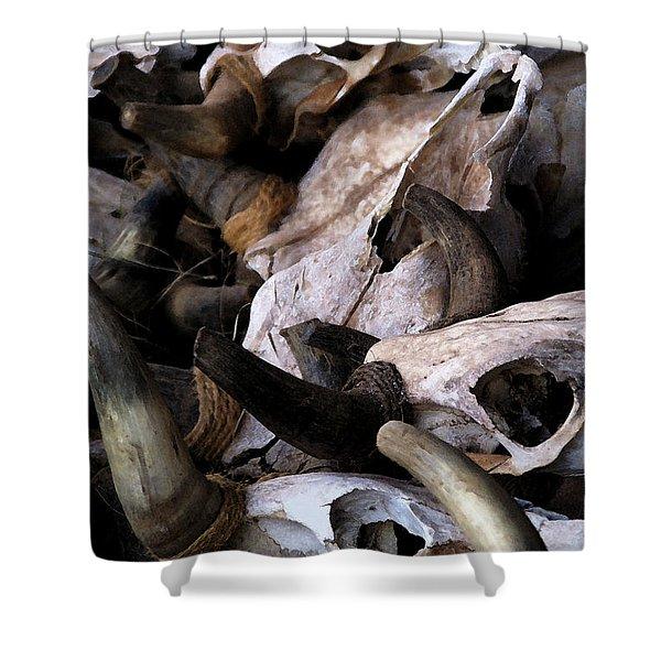 Dry As Bones Shower Curtain
