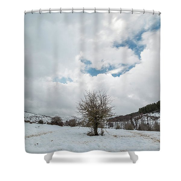 Dry Tree In The Snow Shower Curtain
