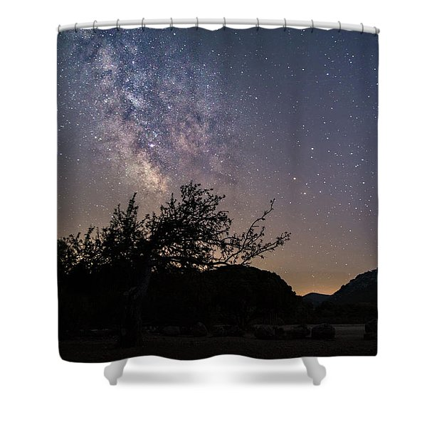 Dry Tree Under The Stars Shower Curtain