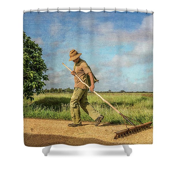 Drying Rice Shower Curtain