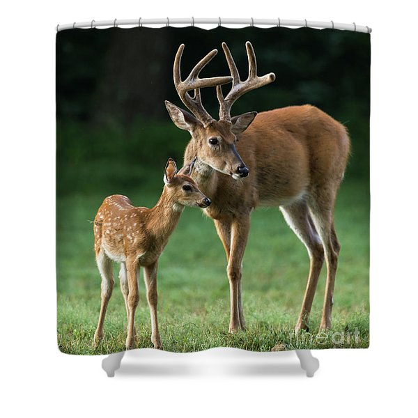 Shower Curtain featuring the photograph Dsc_9232 by Andrea Silies