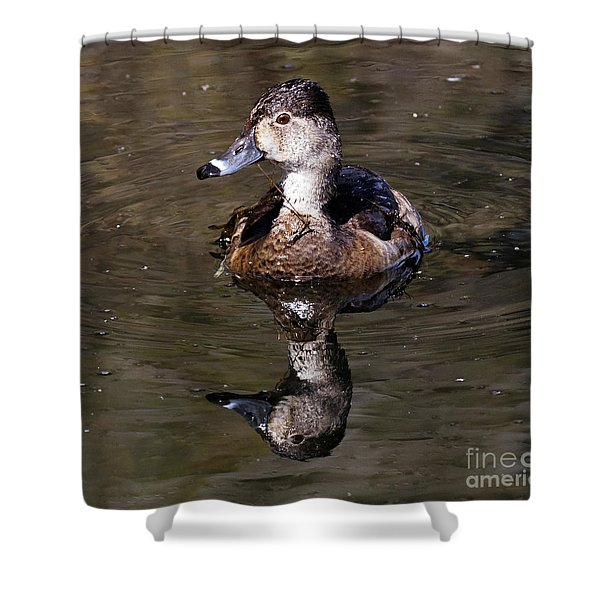 Duck Reflection Shower Curtain