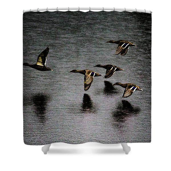 Duck Squadron Shower Curtain