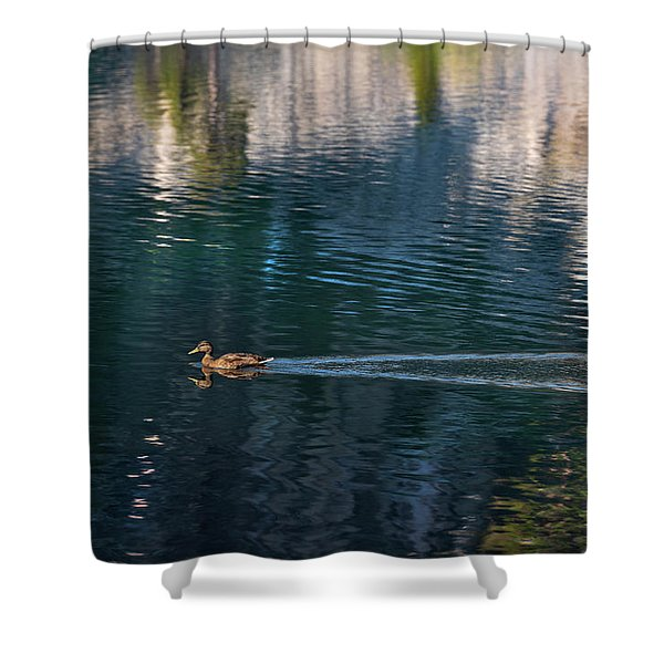 Duck Waves Shower Curtain