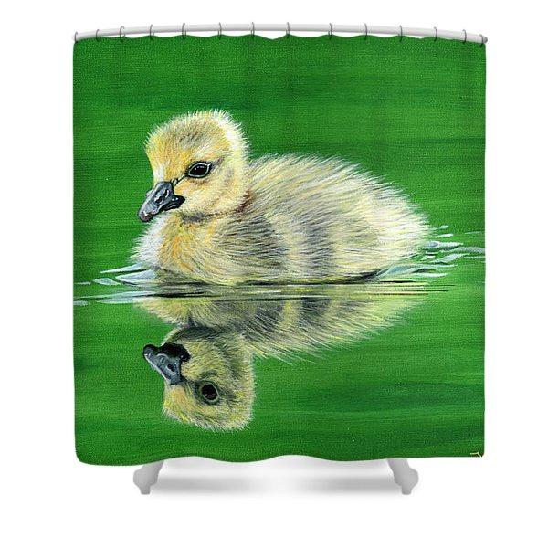 Duckling Shower Curtain