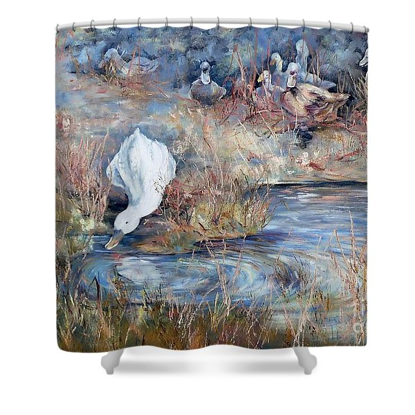 Ducks. Split Opposite Colour Harmony.  Shower Curtain