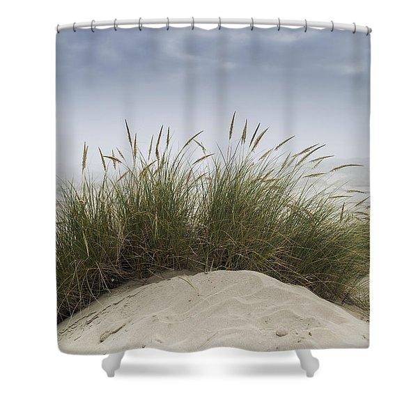 Dune Grass Along The Oregon Coast Shower Curtain