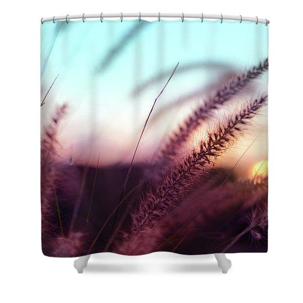 Dune Scape Shower Curtain