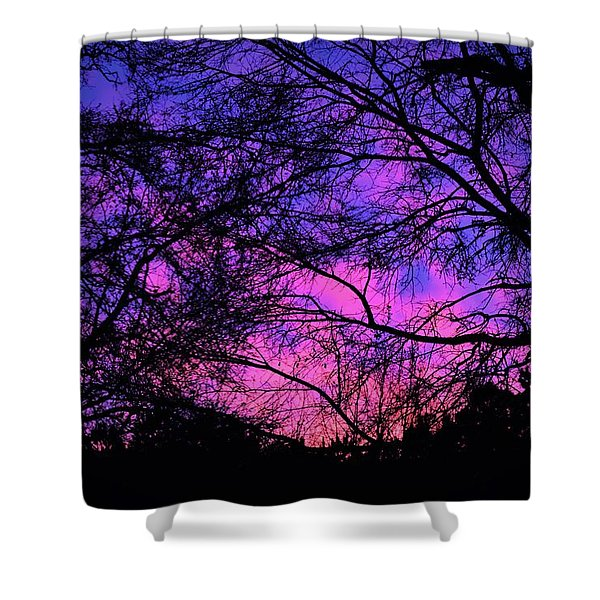 Dusk And Nature Intertwine Shower Curtain