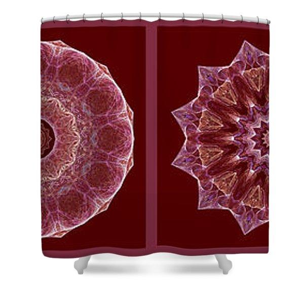 Dusty Rose Mandala Fractal Panel Shower Curtain