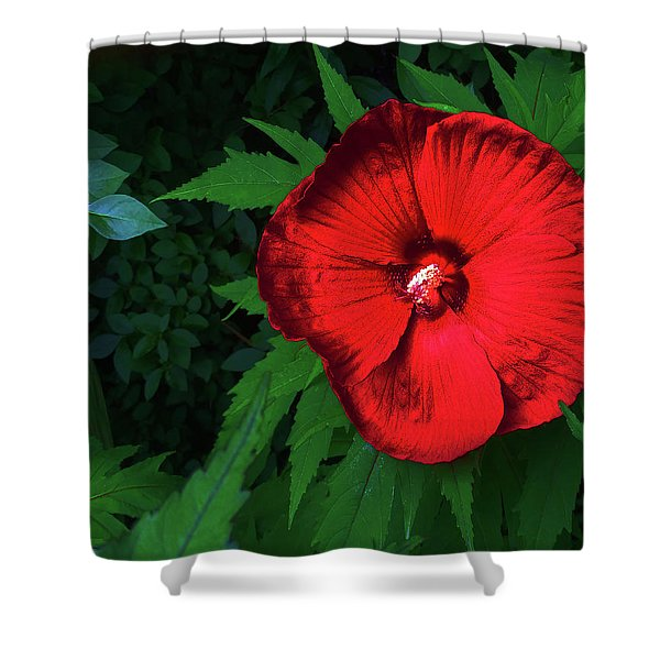 Dynamic Red Shower Curtain