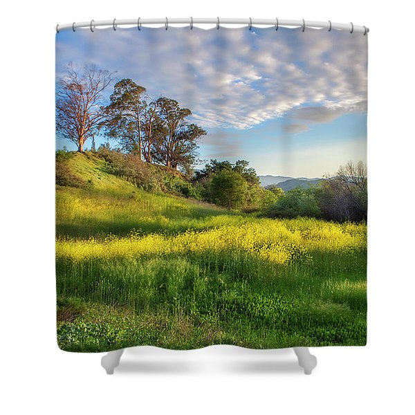 Eagle Grove At Lake Casitas In Ventura County, California Shower Curtain