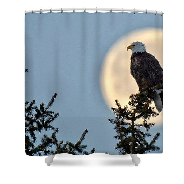 Eagle Moon Shower Curtain