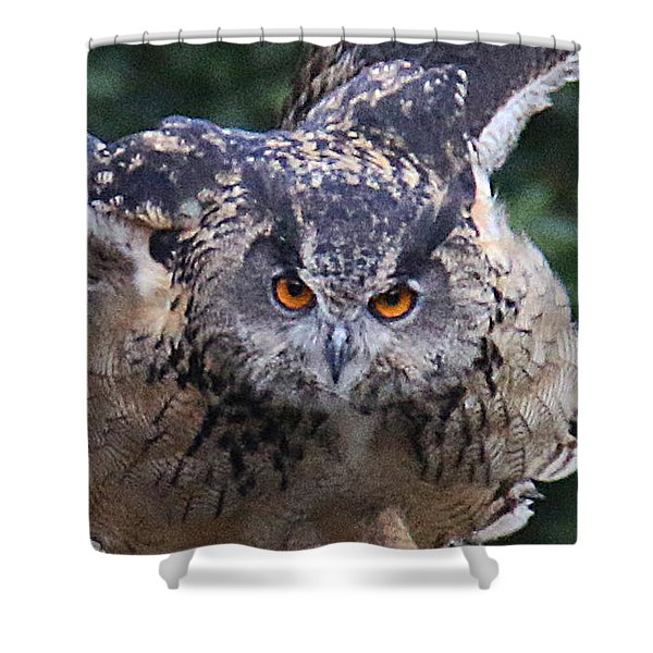 Shower Curtain featuring the photograph Eagle Owl Close Up by William Selander