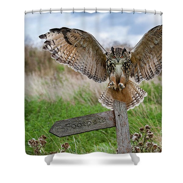 Eagle Owl On Signpost Shower Curtain