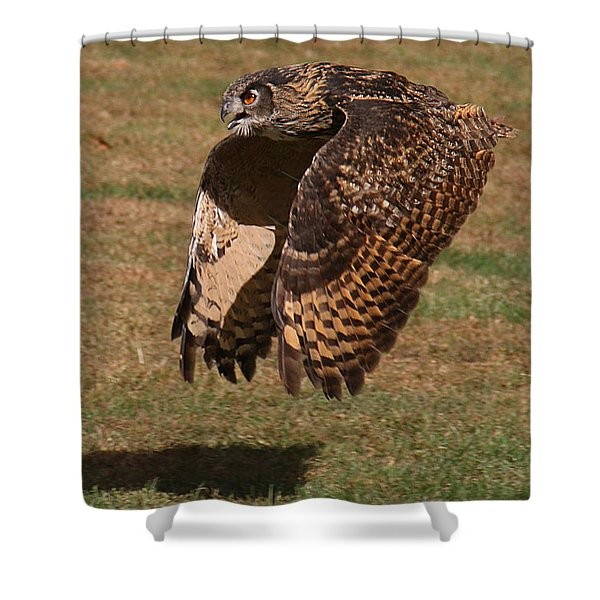 Shower Curtain featuring the photograph Eagle Owl On The Hunt 2 by William Selander
