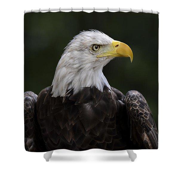 Eagle Profile 2 Shower Curtain