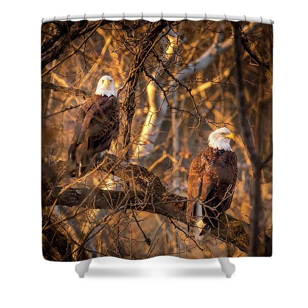 Eagles Shower Curtain