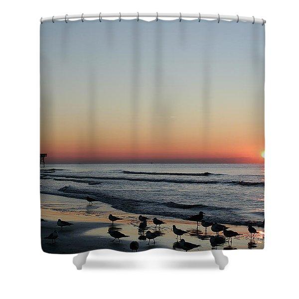 Early Birds Shower Curtain