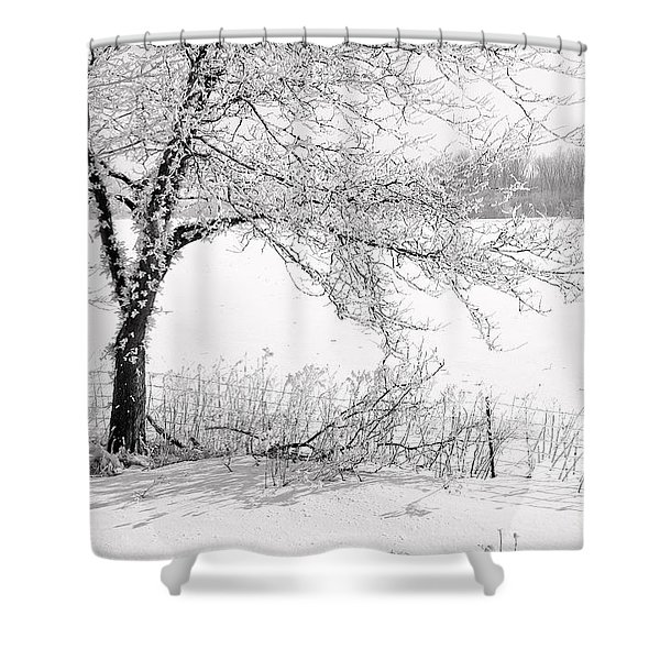 Early Frost Shower Curtain