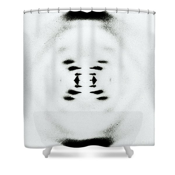 Early Image Of Dna Shower Curtain