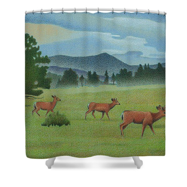 Early Spring Evergreen Shower Curtain