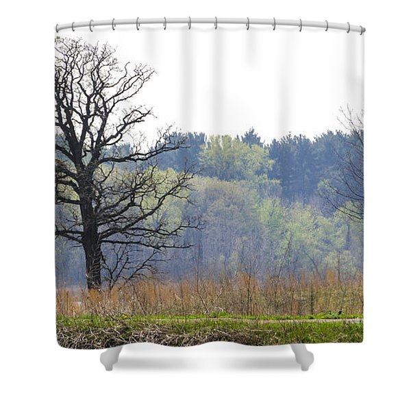 Early Spring Silhouettes  Shower Curtain
