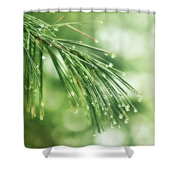 Early Spring Woodland Shower Curtain