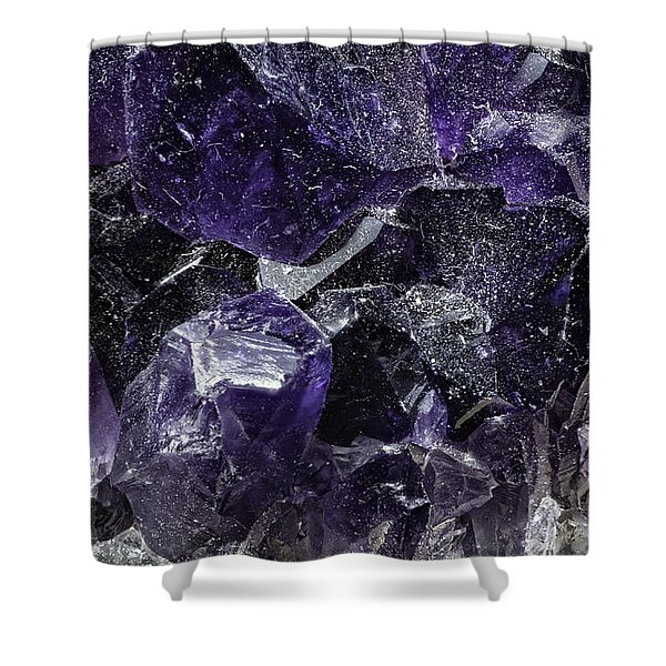Earth Portrait 001-208 Shower Curtain