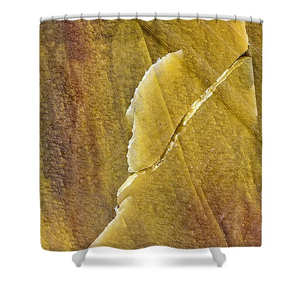 Earth Portrait 001-66 Shower Curtain