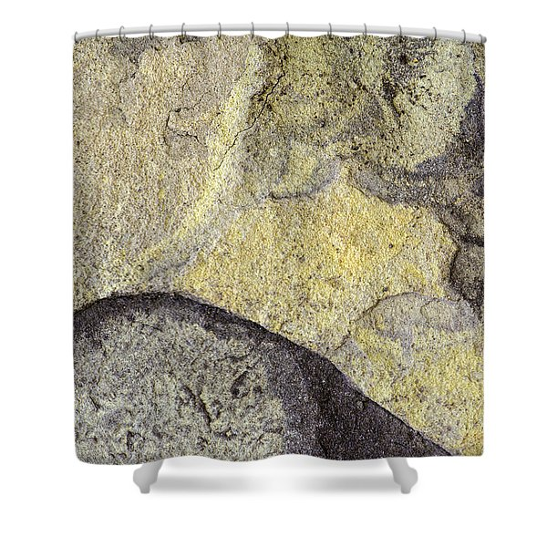 Earth Portrait 010 Shower Curtain